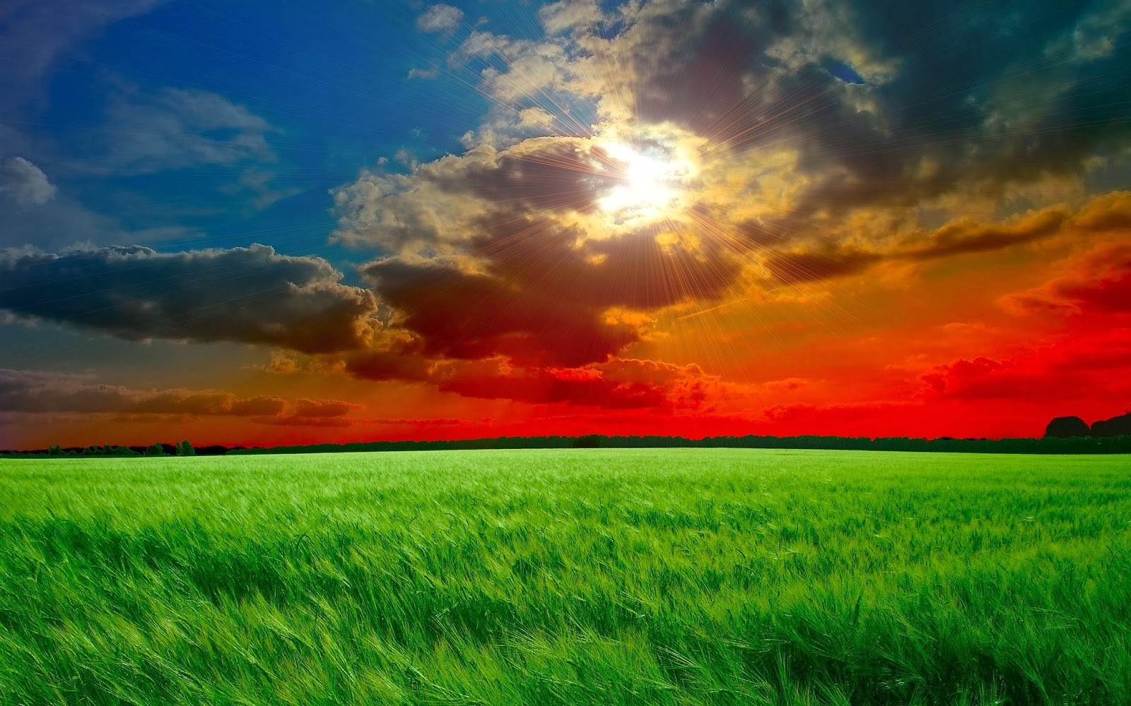 HD Wallpapers and HQ Nature wallpaper For Desktop And ...